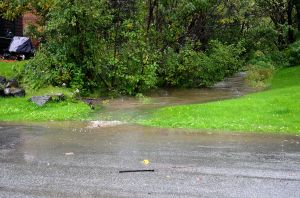 9-11-13 10am Mariner Drive Culvert North Side (3)